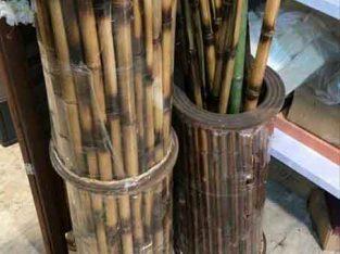 فروش چوب بامبو جهت پرچم و علم